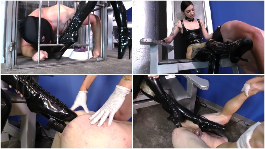 Unlimited, kiss female domination fetish videos her ass