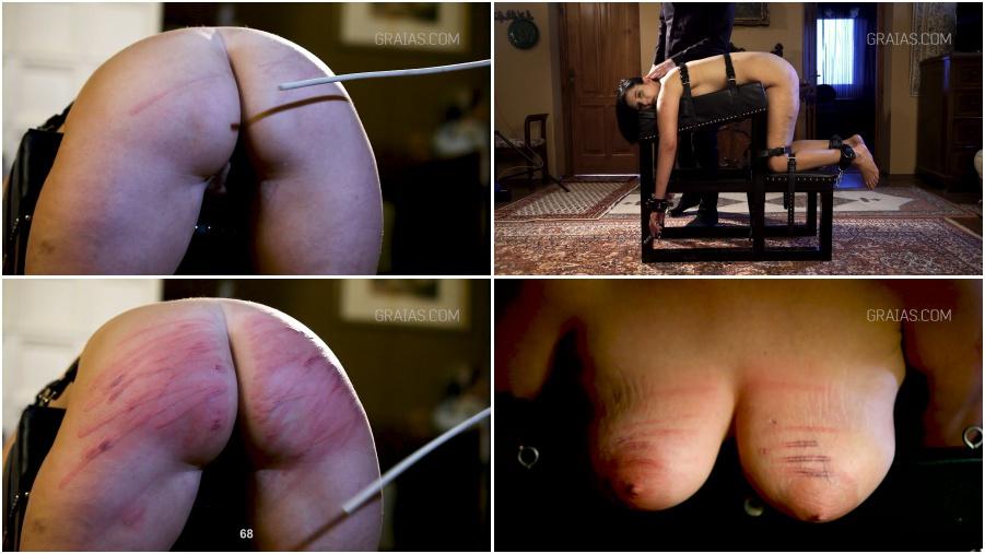 theme, gifs clitoris torture congratulate, what